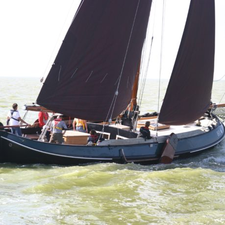 Internationale interesse voor Sail4Parkinson